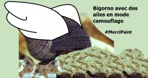 bigorno-ailes-camouflage